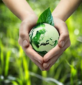 מודעות סביבתית